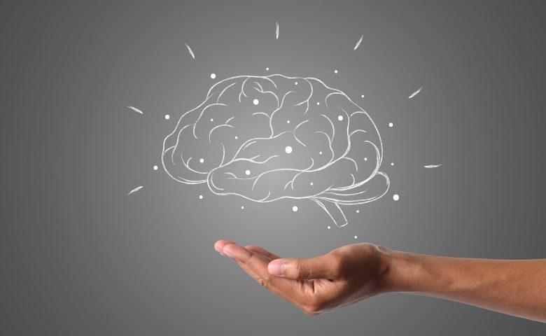 Mozek jako nejdůležitější spojenec v koučinku