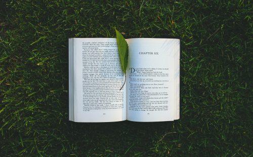 Letní inspirace: Jaké knihy přibalit, když chcete spojit dovolenou a osobní rozvoj?